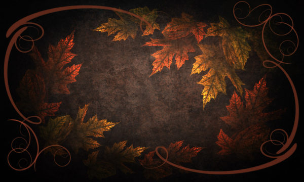 leaves-plants-dark-brown-backgrounds-wallpapers