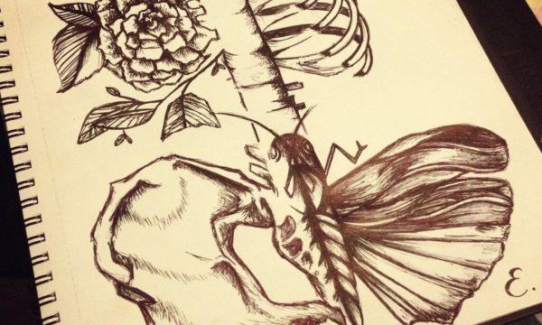 floral_anatomy_pen_sketch_by_estellegourlay-d681xm5
